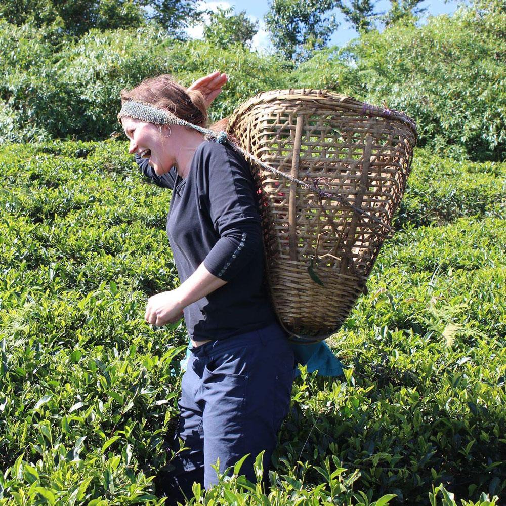 Sakhejung tea